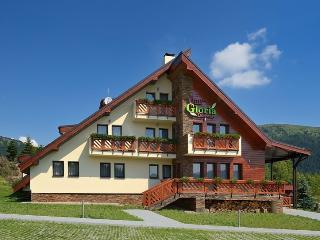 Villa Gloria - Donovaly vacation rentals
