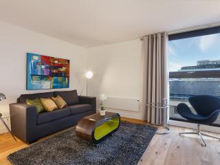 Sleek 2 Bedroom Apartment in Farringdon - World vacation rentals