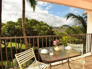Kihei Akahi 1 Bedroom C311 - Kihei vacation rentals