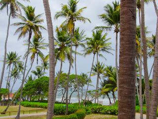 Oceanfront Villa,  Perfectly Located in Palmas del Mar (BV246) - Humacao vacation rentals