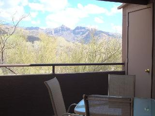 1 Bedrm/Den Located close to 2 pools/spa and Mountain Views from Patio - Tucson vacation rentals