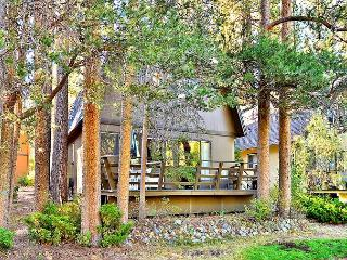 3BR Classic Lake Cabin with Big Yard in South Lake Tahoe - South Lake Tahoe vacation rentals