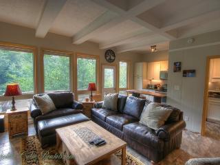 Nice 2 bedroom House in Beech Mountain - Beech Mountain vacation rentals