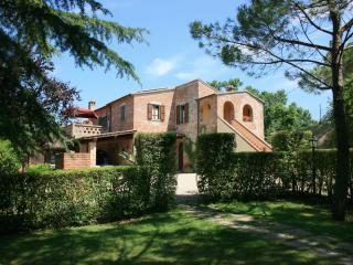 MOLIN VECCHIO - ORZO Foiano della Chiana - Foiano Della Chiana vacation rentals