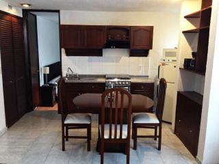 Apartment close to Interlomas and santa fe - Mexico City vacation rentals