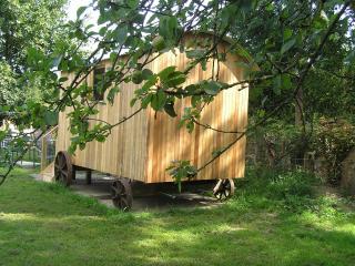 Rhydd Farm Shepherd's Hut - Mold vacation rentals