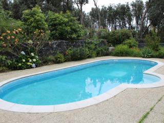 B&B Casa dos Hibiscos, S. Miguel - Ponta Delgada vacation rentals