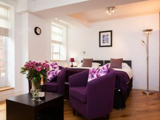 4 Star Quality Studio Suites near Sloane Square - London vacation rentals