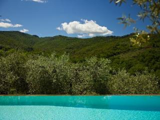 Leccino with pool and Jacuzzi - Perugia vacation rentals