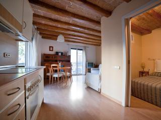 Clot Comtal - Barcelona vacation rentals