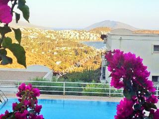 2 bedroom Condo with Parking in Bitez - Bitez vacation rentals