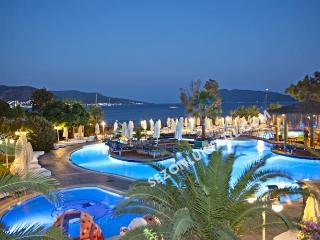 Perfect 2 bedroom Condo in Bodrum with Internet Access - Bodrum vacation rentals
