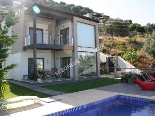 Private swimming-pool villa in Bodrum - Bodrum vacation rentals