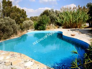 Beautiful Villa with A/C and Parking Space - Turgutreis vacation rentals