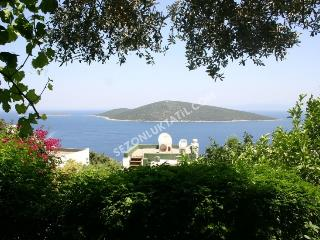 2+1 DETACHED VILLA IN TURKBUKU - Golturkbuku vacation rentals