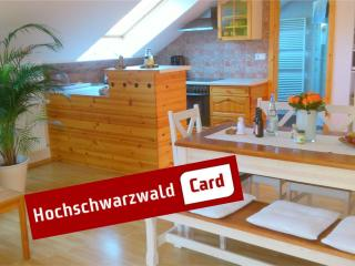 2 bedroom Apartment with Internet Access in Sankt Blasien - Sankt Blasien vacation rentals