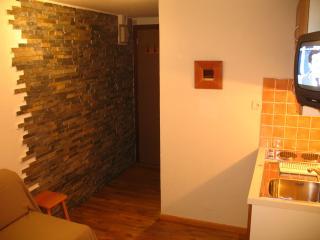 Studio Palafour Tignes - Tignes vacation rentals