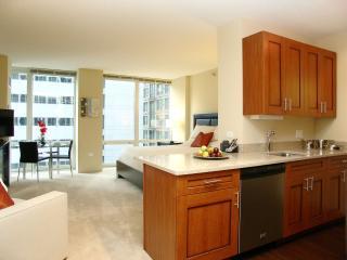 MODERN LOOP FURNISHED STUDIO APARTMENT - Chicago vacation rentals