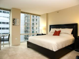 Chicago Loop Luxury Studio Apartment - Chicago vacation rentals