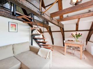 City Centre Kobalt Inn Apartments (Combo) - Amsterdam vacation rentals