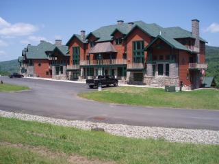 Beautiful Condo on Hunter Mountain - Hunter vacation rentals
