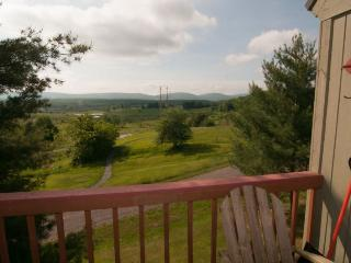 Mountain Magic - 195 Wildflower Way - Canaan Valley vacation rentals