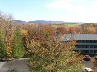 2 bedroom House with Internet Access in Canaan Valley - Canaan Valley vacation rentals