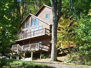 Cinnamon Fern Chalet - 441 Northpoint Way - Canaan Valley vacation rentals