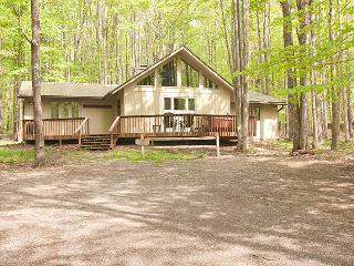 Timber Haus - 43 Bobcat Road - Canaan Valley vacation rentals
