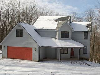 Charming House with Internet Access and DVD Player - Canaan Valley vacation rentals