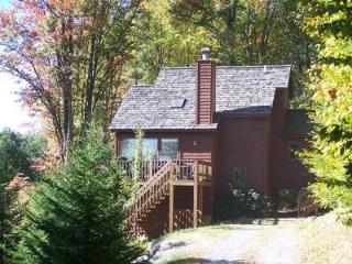 The Cabin - 323 Hikers Challenge Road - Canaan Valley vacation rentals