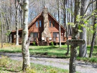 Mingo Lodge - 345 Lakeview Road - Canaan Valley vacation rentals