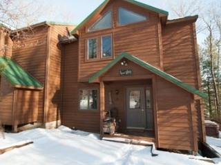Quiet Snow - 72 Lower Lane - Canaan Valley vacation rentals