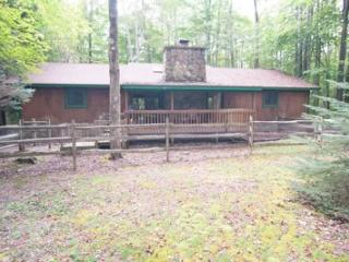 Beautiful House with Internet Access and DVD Player - Canaan Valley vacation rentals