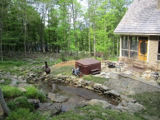 Bright 4 bedroom Canaan Valley House with Internet Access - Canaan Valley vacation rentals