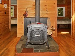 Cozy House with Deck and Internet Access - Hyde Park vacation rentals