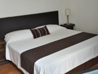 Departamento Polanco todo Incluido - Mexico City vacation rentals