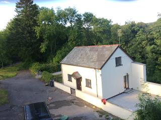 The Lodge Fedw Hir - Aberdare vacation rentals