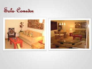Nice Condo with Internet Access and Television - Guadalajara vacation rentals
