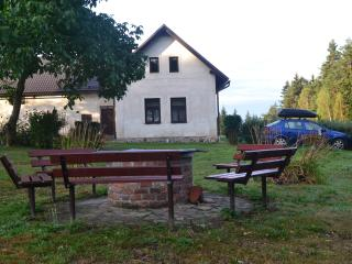 Off the beaten track peasant's cottage near forest - Chotebor vacation rentals