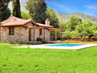 Private Villa with Swimming Pool in 2500 M2 - Kayakoy vacation rentals