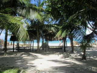 Coconut village beach front apartments diani - Diani vacation rentals