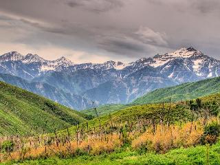 Vacation rentals in Wasatch Range