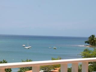 Big Party Beach Paradise - Sleeps 20,30,40,50! - Rincon vacation rentals