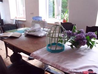 Country Vacation with Your Dog in an Apartment - Flensburg vacation rentals