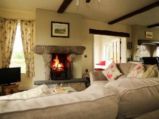 Sea and Mountains Cottage - Newry vacation rentals