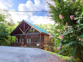 Grumpy Bear - Gatlinburg vacation rentals