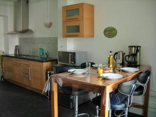 Nice Condo with Internet Access and Central Heating - Epinal vacation rentals