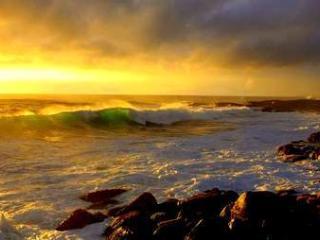 Honu Hale 3 Rentals - Keaau vacation rentals