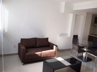 1 bedroom Condo with Satellite Or Cable TV in Mexico City - Mexico City vacation rentals